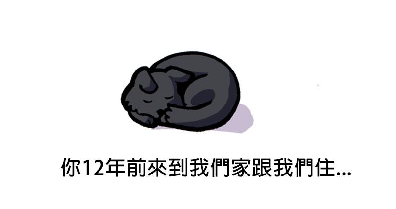 網友用可愛插畫寫了封信給養了12年但「跑去當天使的狗狗」 連不喜歡狗的人都會想要大哭!
