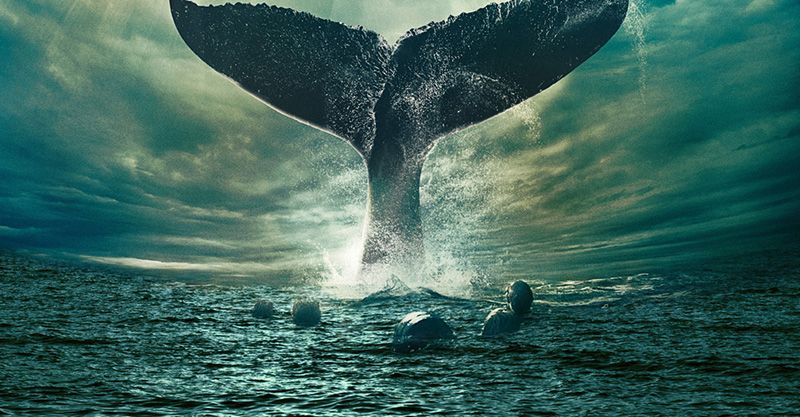 別再來攻擊我!歷史上最大「動物復仇」 造就經典文學《白鯨記》