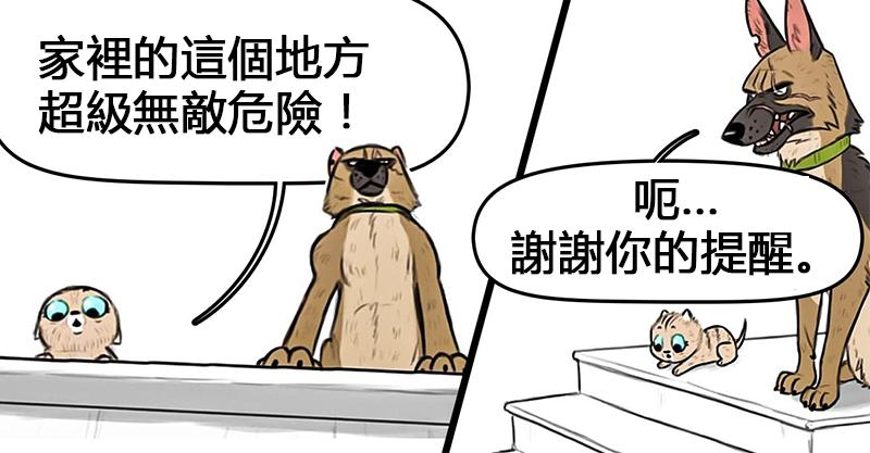 5張藝術家畫出「溺愛小貓咪的大狗狗」療癒故事 教貓咪對付壞蛋太好笑!