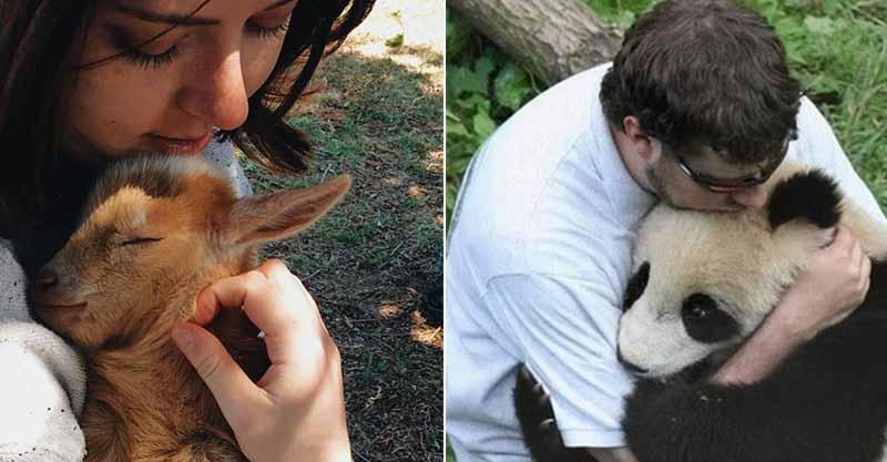 22張「融化冰山人嘴角」的動物溫馨照 連熊貓也愛上「超溫暖的擁抱」!