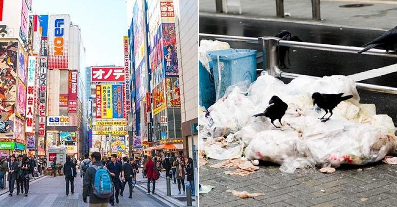 網紅實測「日本的垃圾桶到底多難找?」 遊客「花的時間」讓人傻眼...其中一組乾脆放棄!