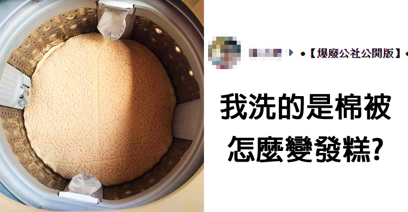 洗棉被打開洗衣機...「變發糕」 網見療癒表面:我看倒像豬腦