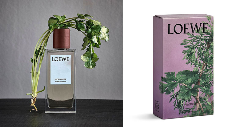 精品推出「香菜香水」挑戰嗅覺極限 香氛控也怕:這個先不用!