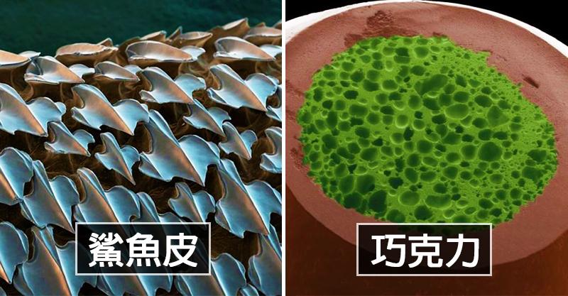 19張讓你嚇壞的「顯微鏡下」平凡物 牙線不要再重複利用了!